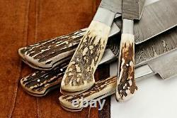 CUSTOM HAND MADE DAMASCUS BLADE 6 PCS KITCHEN/CHEF KNIFE SET 1071-Stag