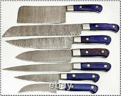 CUSTOM MADE DAMASCUS BLADE 7 Pc's. KITCHEN KNIVES SET. ZE-1081-B-H 7C