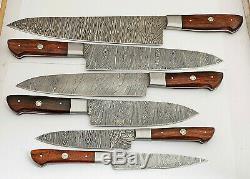 Custom Hand Made Damascus Blade 6 Pcs Kitchen Knife Chef Knife Set 071 Rose