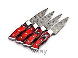 Handmade 4 Piece Steak Knife Set Damascus Steel 256 layers With Leather Bag Sharp