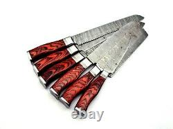 Professional Handmade Kitchen/Chef's Knives Set Damascus Steel with leather case