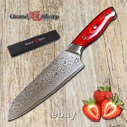 2 Pc Set Damascus Chef Knife 67 Couches D'acier Japonais Vg10 Santoku Sushi Salmon