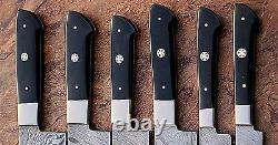 Custom Handmade Damascus Steel Beautiful 6pcs. Couteaux De Cuisine Ensemble Ec 071-h