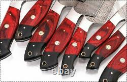 Détails Sur Damascus Chef/kitchen Knife Custom Made Blade 8 Pcs. Set. Mh-16