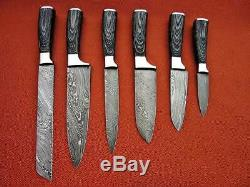 Fait Sur Mesure Damas Blade 6pcs. Couteaux Chef / Cuisine Set DC 1049-6
