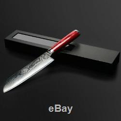 Japonais Damas Kithcen Ensemble De Couteaux 67-couche Vg10 Acier De Base Incroyable Qualité