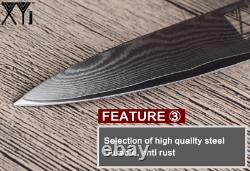 Vg10 Damascus Steel 73 Couches 4pcs Knife Set Chef Santoku Utility Pairing Wood 5