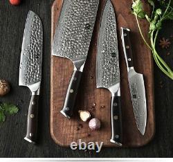 Xinzuo 4pcs Kitchen Knife Chef Set Vg10 Damas Acier Inoxydable