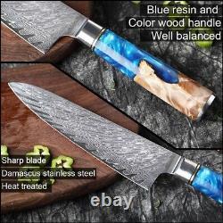 Xitoo Couteaux De Cuisine-set Damas Acier Vg10 Couteau Chef Couteau Paring Pain Kni